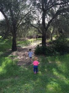 Socal Hike